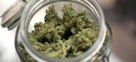 The incredible healing power of marijuana