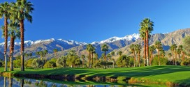 I Love Palm Springs!