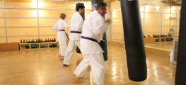 Benefits of Using a Punching Bag in Martial Arts