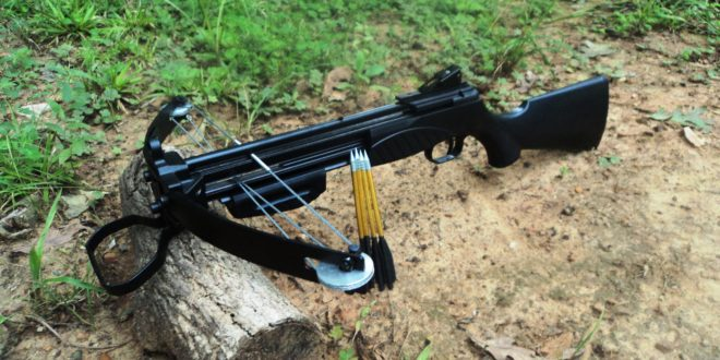 Crossbows – What You Need to Know