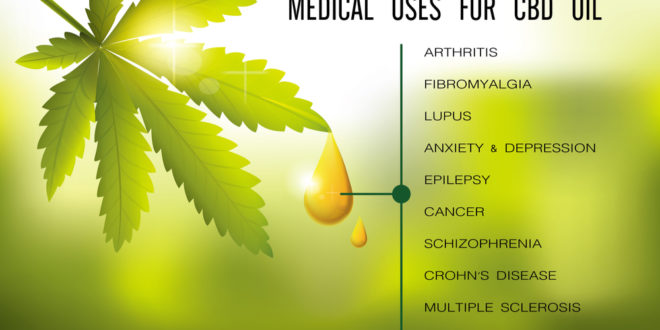 The Beautifying Benefits of CBD Oil and How It Works?