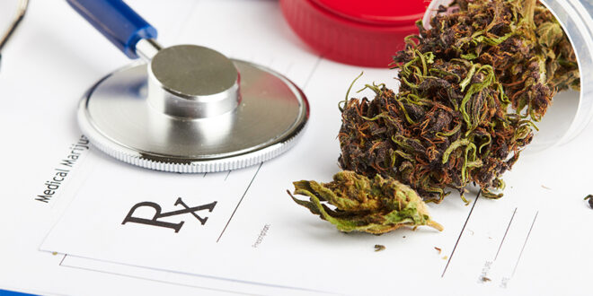 Can Medical Marijuana Help Treat Cancer Patients